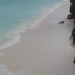 Honeymoon safari Zanzibar beach holidays