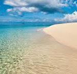 Bush and beach safari & Zanzibar