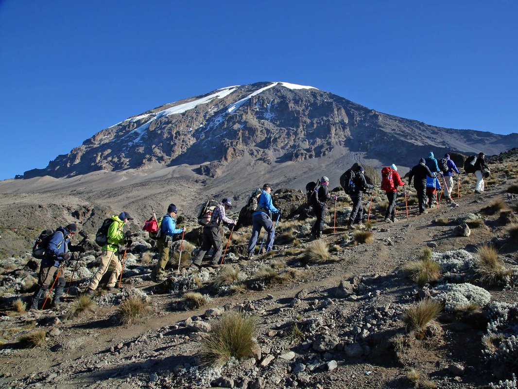 Climbing Kilimanjaro Cost | Packages & Prices, Cheap ...