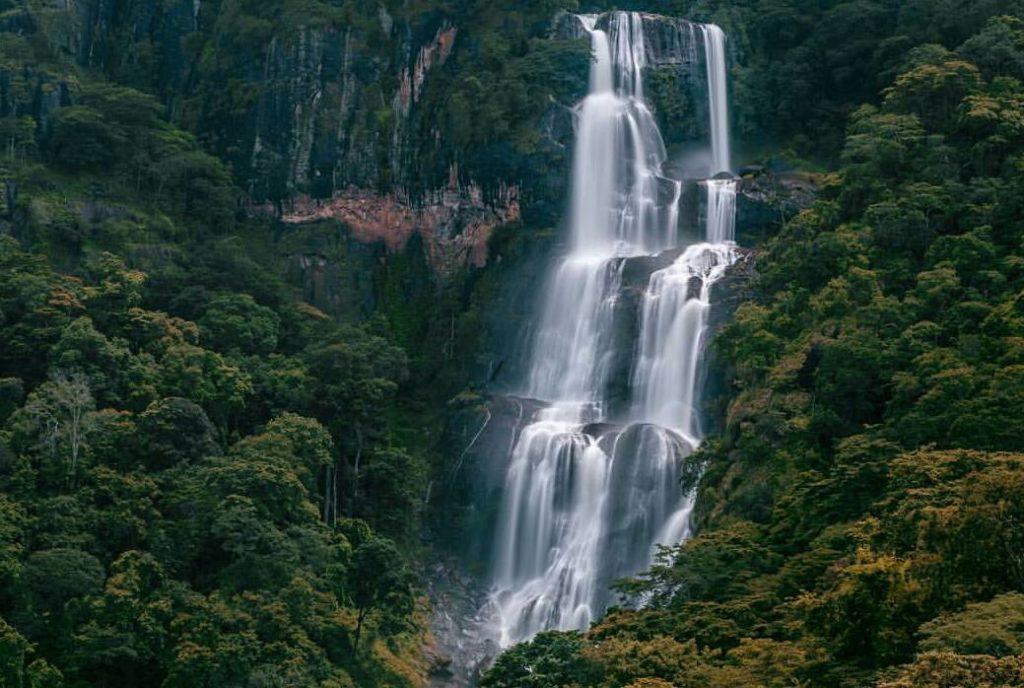 Udzungwa Mountains National Park Day Hiking