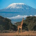 Climbing Kilimanjaro Tours & Packages