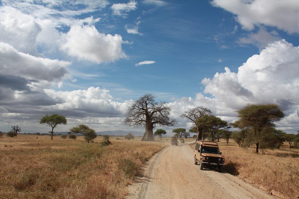 Travel Tips and Tanzania Safari Programs