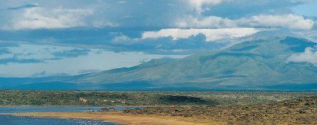 Short 4 Days Tanzania Lodge Safari