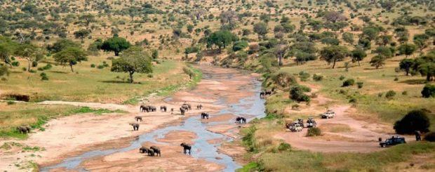 3 Days Tanzania Lodge Safari Ngorongoro Crater Tarangire & Lake Manyara
